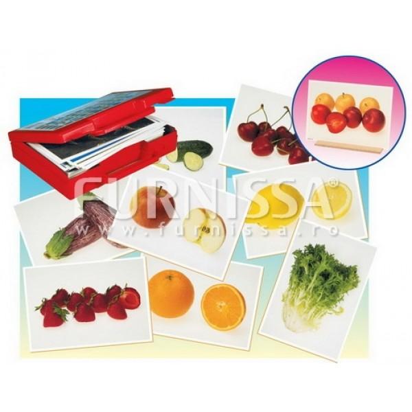 Cartoane cu Alimentele de Baza